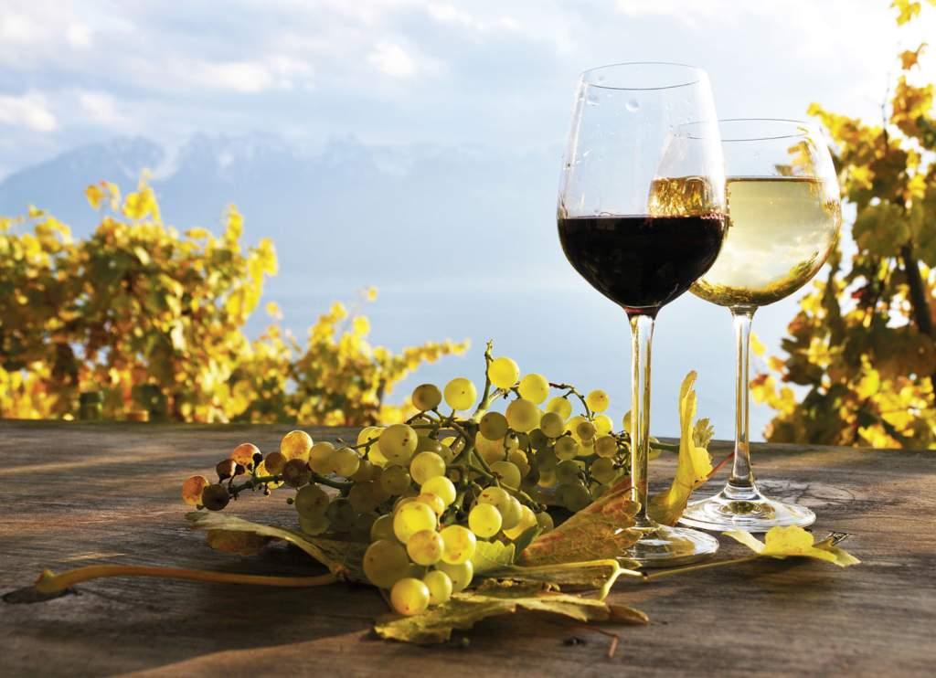 Wein und Obstschnaps