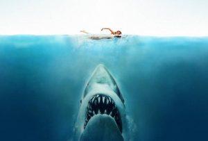 der tödlichsten Haie - Platz