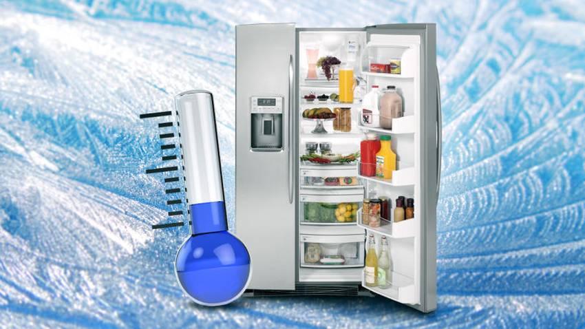 Aufbau Kühlschrank Lebensmittel : Kühlschrank richtig einräumen die verschiedenen kältezonen