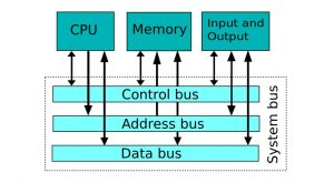 Computer system bus