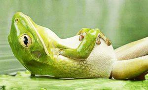 Entspannung