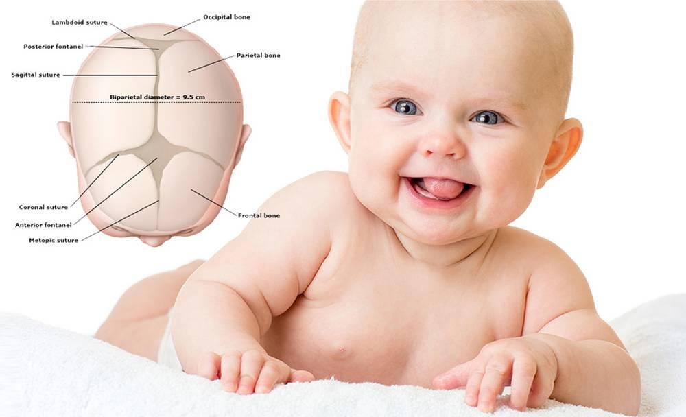 Dellen und Beulen am Kopf von Babys - Wie-funktioniert.com